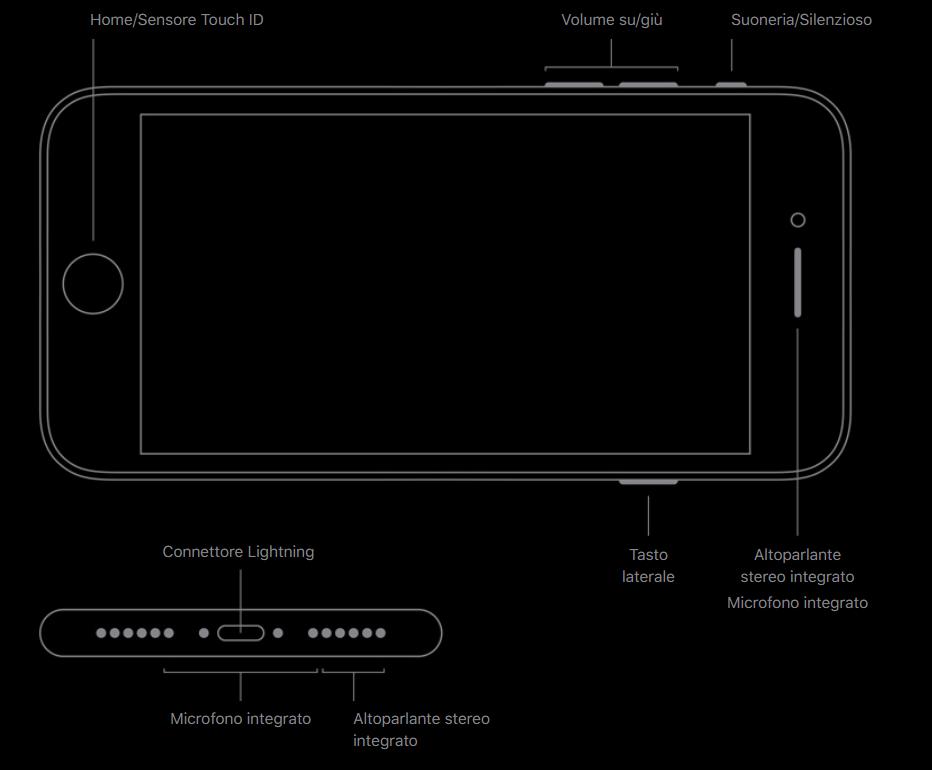 iPhone SE 2020 connettore e tasti